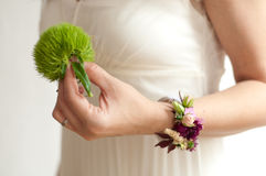 Fleur verte de mariage d'oeillet Photos libres de droits