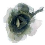Fleur verte de tissu Photos stock