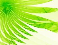 Fleur verte très gentille Photo libre de droits