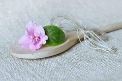 Fleur violette avec une feuille Photos libres de droits