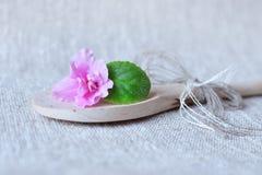 Fleur violette avec une feuille Images libres de droits