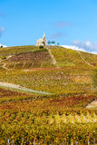 Fleurie, Rhone-Alpes, France Stock Photo