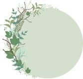 Fleurissez autour du cadre avec des herbes, des brindilles et des leafes illustration libre de droits