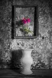 Fleurissez dans un cadre de tableau noir et blanc, et le vase sur en bois Photos libres de droits
