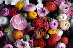 Fleurissez la disposition de mariage avec le ranunculus, méson pi, roses Photo libre de droits