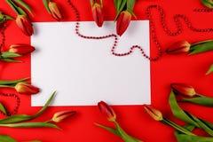 Fleurissez la tulipe avec la feuille vide de livre blanc sur le fond rouge Image stock