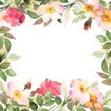 Fleurissez le cadre carré de Bohème avec les roses roses et rouges Photo libre de droits