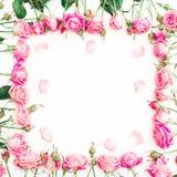 Fleurissez le cadre des roses et des pétales roses sur le fond blanc Configuration plate, vue supérieure Image libre de droits