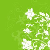 Fleurissez le fond Photos stock
