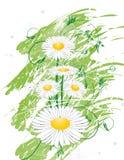 Fleurissez le fond illustration de vecteur