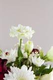 Fleurissez le groupe Photographie stock libre de droits