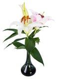 Fleurissez le lis sur un fond blanc avec l'espace de copie pour votre messa Image libre de droits