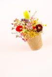 Fleurissez le panier Photographie stock libre de droits