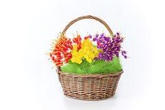 Fleurissez le panier Photo libre de droits