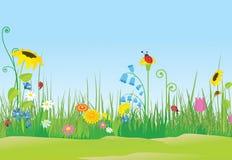 Fleurissez le pré avec des coccinelles Images stock