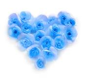Fleurissez les pétales formant une forme de coeur sur le fond blanc Image libre de droits