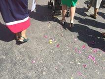 Fleurissez les pétales sur la rue pendant un festival Photographie stock libre de droits