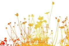 Fleurissez les textures abstraites Image libre de droits