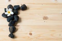 Fleurissez sur le groupe de la pierre sur le plancher en bois Image libre de droits