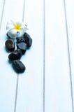 Fleurissez sur le groupe de la pierre sur le plancher en bois Photo libre de droits