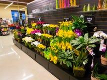Fleuriste Photographie stock