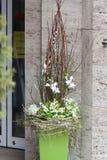 Fleuriste de décoration de ressort Photo stock