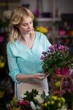 Fleuriste féminin arrangeant des fleurs dans le panier Images stock