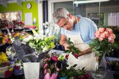 Fleuriste masculin arrangeant des fleurs Images libres de droits