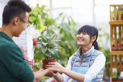 Fleuriste masculin Talking à son client dans la boutique Photo stock