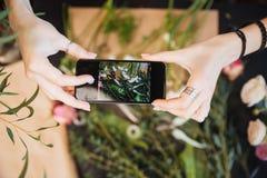 Fleuriste tenant le smartphone et prenant des photos de fleur sur la table Photos stock