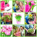 Fleuristes image libre de droits