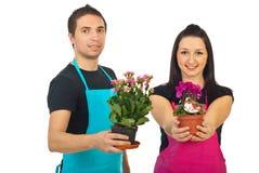 Fleuristes avec des fleurs à vendre photographie stock libre de droits