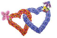 Fleurit des coeurs d'amants Photos stock