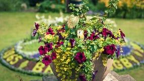 Fleurit des décorations dans des jardins de défilé Images stock