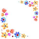 fleurit l'été Image libre de droits