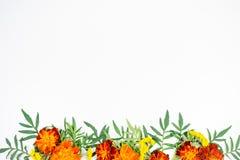 Fleurit l'image de composition Image libre de droits
