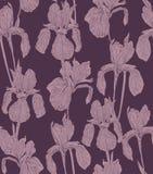 Fleurit l'iris sans couture d'illustration de silhouette de fond de modèle Éléments de conception graphique Photos stock