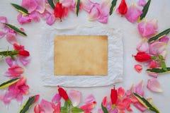 Fleurit la composition Photos libres de droits