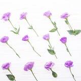 Fleurit la composition La vue a fait les fleurs colorées d'eustoma sur le fond et l'espace libre en bois blancs pour le texte au  Image libre de droits
