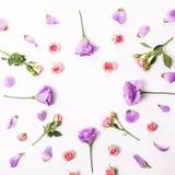 Fleurit la composition La vue a fait les fleurs colorées d'eustoma sur le fond et l'espace libre en bois blancs pour le texte au  Photos libres de droits