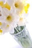 fleurit le blanc Photographie stock libre de droits