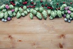 Fleurit le cadre de la brindille d'houblon sur le fond en bois Photos stock