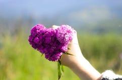 Fleurit le coeur Image stock