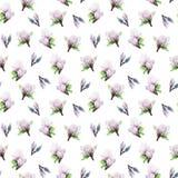 Fleurit le modèle de magnolia sur un fond blanc d'isolement illustration stock