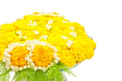 Fleurit le plateau Photo stock