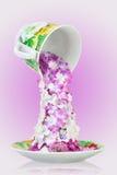 Fleurit le thé dans la tasse images libres de droits