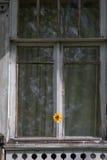 Fleuron sur l'hublot Images stock