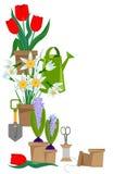 Fleurs à bulbes de ressort dans des pots et des outils de jardin Photographie stock