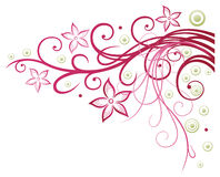 Fleurs, élément floral Images libres de droits