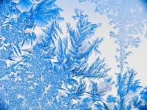 Fleurs 07 de glace Photos libres de droits